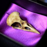 GOTHIC ODDITIES  - NEW Raven Skull - Aged bone color resin  - Goth Oddity home decor.