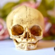 Skull replica  - real size resin fetus skull aged bone color - Goth Oddity home decor or craft supply. -